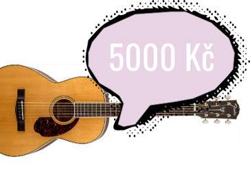 Jakou kytaru do 5000 Kč
